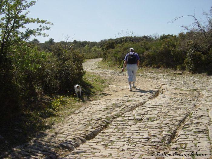 Teil der alten Römerstrasse
