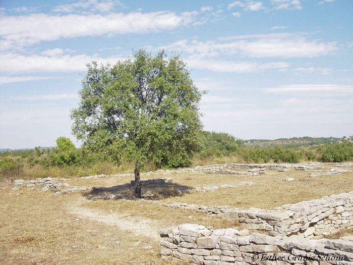 Spuren in Ambrussum