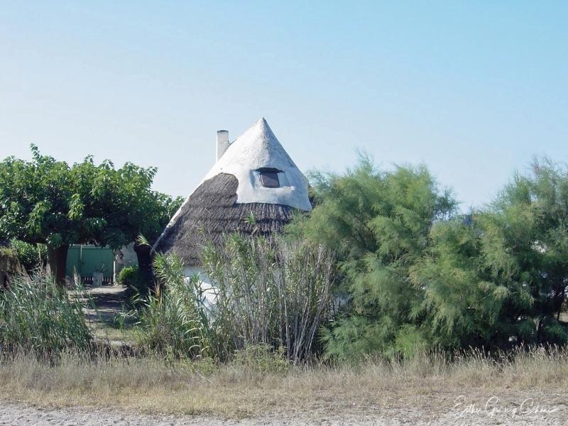 Cabane in der Landschaft
